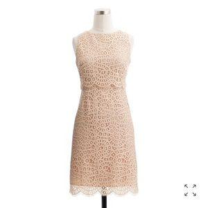 🆕 J. CREW GORGEOUS LACE DRESS